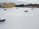 Expert Flat Roofing Services